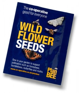 Free Wildflower Seeds Packets