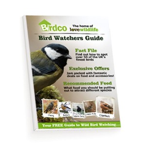 Free Bird Watching Guide