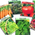 free vegetable seed packets