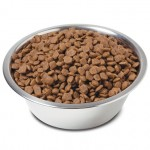 free tails dog food pack