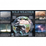 <b>Free BBC 'Wild Weather' Poster</b>