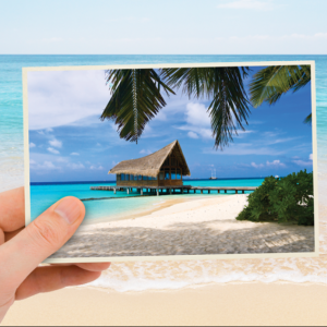 Free Photo Postcard (Worth £1.49)