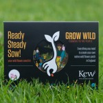 Free Grow Wild Seeds Packet