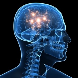 Free Brain Food Supplement Pack