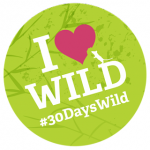 free wildlife trusts badge & stickers