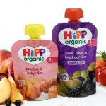 free hipp organic baby food pouch
