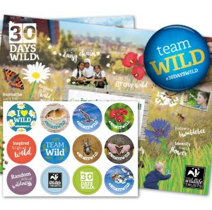 Free Wildlife Stickers & Seeds