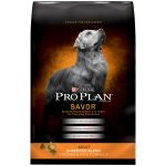 <b>Free Purina Dog Food Bag</b>