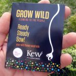 <b>Free Spring Wildflower Seeds</b>