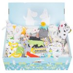<b>Free Baby Box Goodies</b>