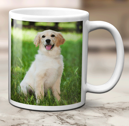 Free Photo Mug (Worth £8.99)