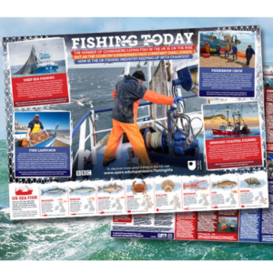 Free BBC Fishing Poster