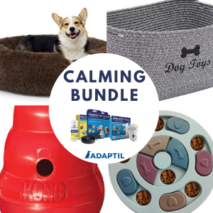 Win a Dog Bed, Kong Toy & More!